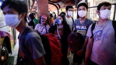 FILIPINAS DETECTA BROTE DE GRIPE AVIAR H5N6 EN GRANJA DE CODORNICES