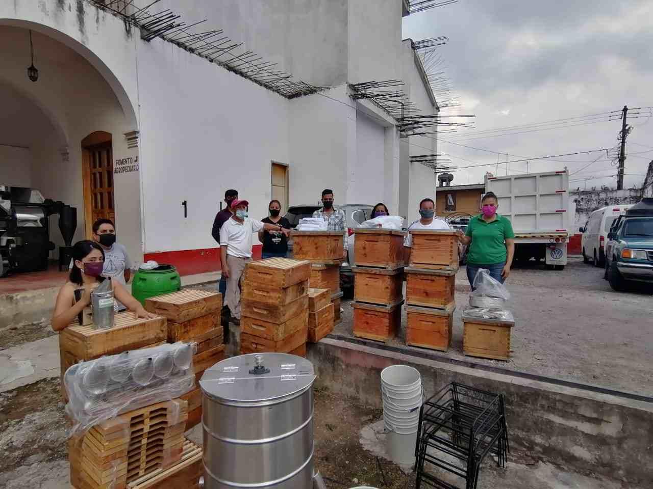 PRUMUEVEN APICULTURA EN HUATUSCO