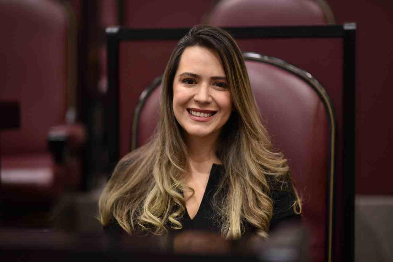 DIPUTADA PROPONE QUE EMPLEADOS DEL PODER JUDICIAL SEAN BASIFICADOS