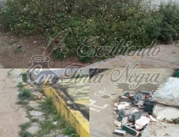 NO LE DAN MANTENIMIENTO A PANTEONES DE HUATUSCO