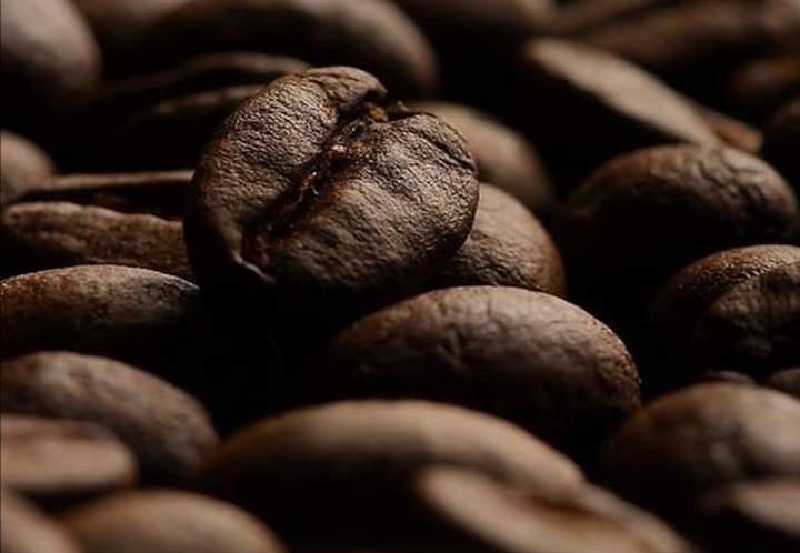 SEDARPA PROMETE VINCULAR A CAFETICULTORES CON MERCADOS DE ESPECIALIDAD